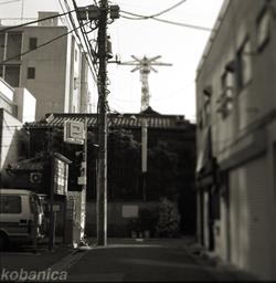 Kobanica_090412_tokyo66_1