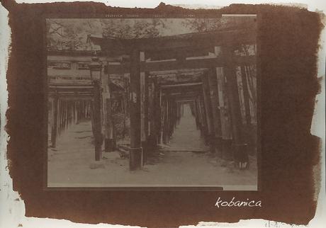 090511kobanica_keiranprint01